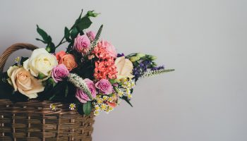 Keeping Cut Flowers Fresh