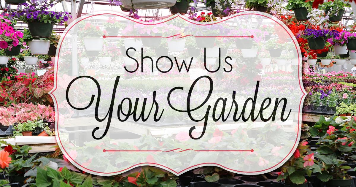 Show Us Your Garden
